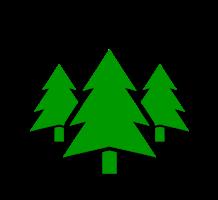Sierra Outdoor School Logo